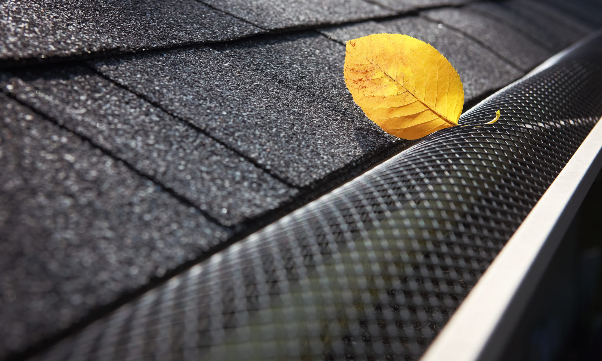 Fall Gutter Protection